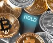 Max Keizer: Altcoin Fenomeni Bitti, Para Bitcoin'e Akacak