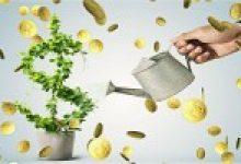 Yale'in Kripto Yatırımı, Daha Fazla Kurumsal Yatırımcı Çekecek Mi?