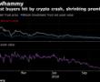 Bu Trader şirketi Bitcoin yatırımlarına % 100 prim ödedi