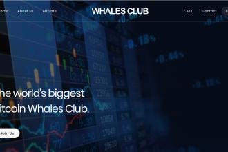 Whales Club Türkiye | Whales Club Kimdir | Whales Club Kazanç Sunumu